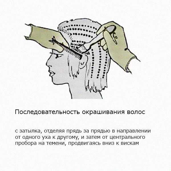 Последовательность окрашивания волос хной